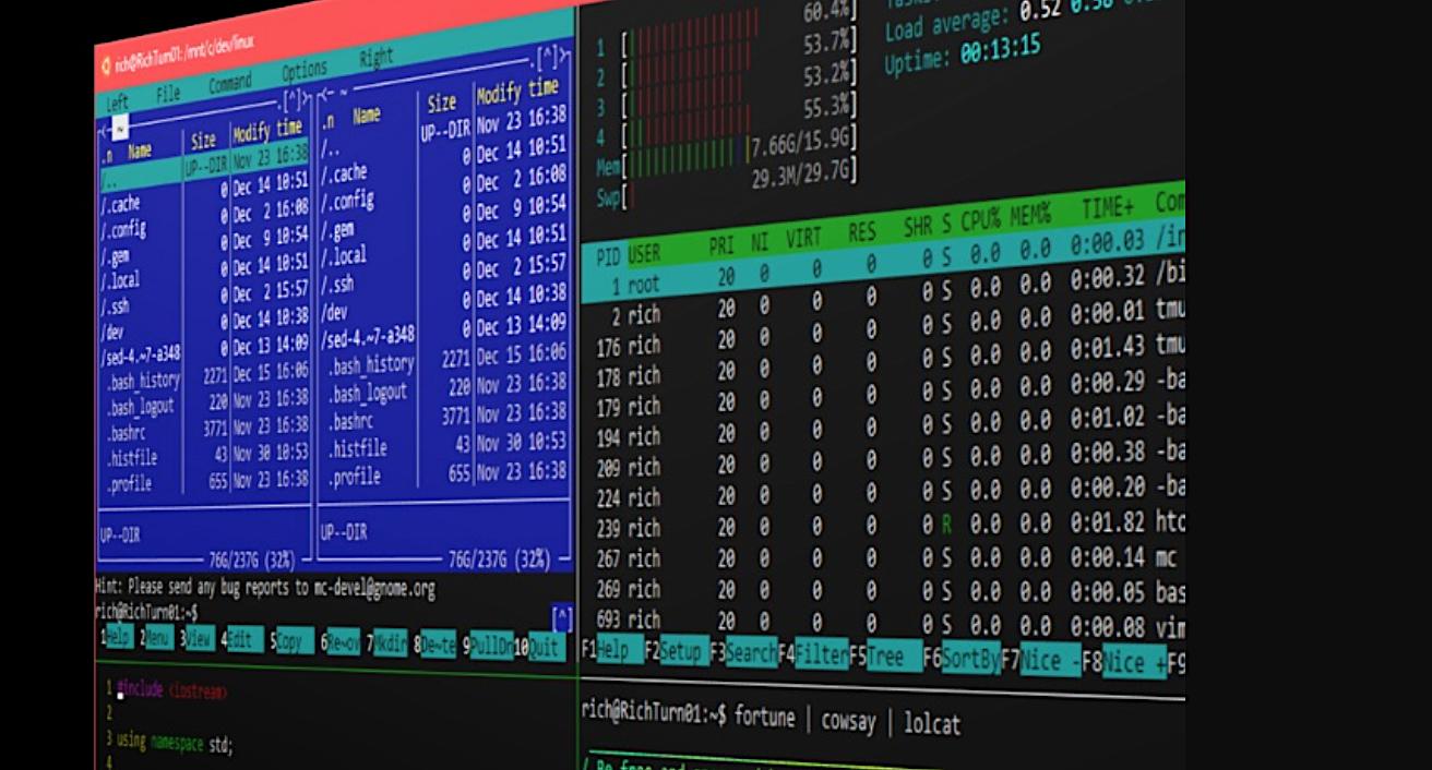How to Use WSL Like a Linux Pro - Linux com